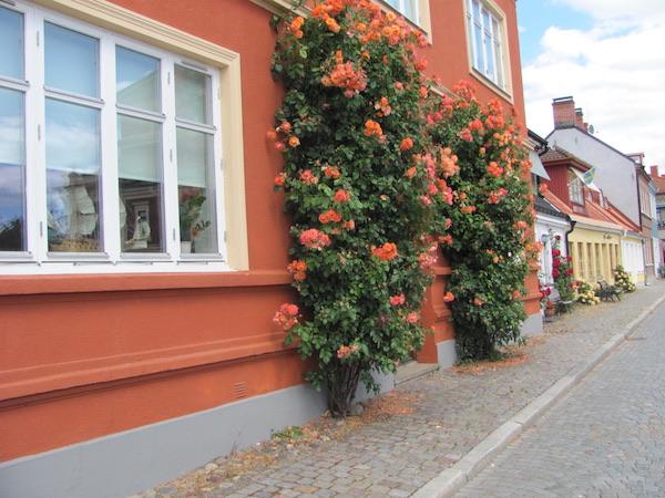 Kopfsteinpflasterstraße mit Häusern und Rosen