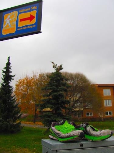 Hälsan Stig Umeå