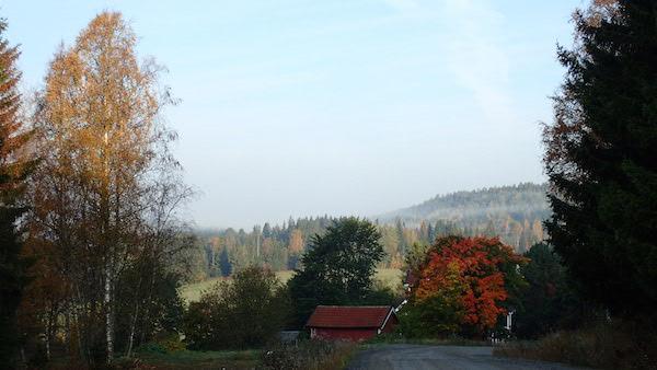 Rotes Schwedenhaus mit Herbstkulisse