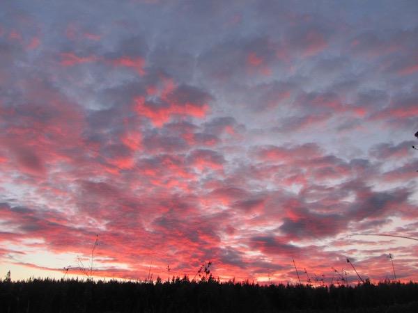 Schwedischer Herbst, rosa-graue Wolken