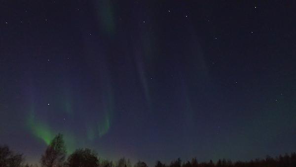 Sternenhimmel und blaues und grünes Nordlicht über Wald in Schweden