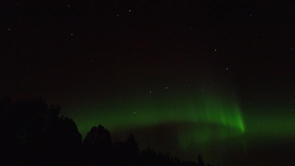 Grüner Polarlicht-Bogen