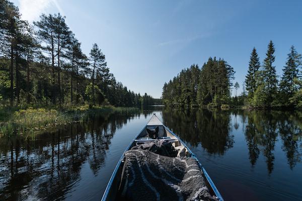 Hündin im Kanu in Schweden