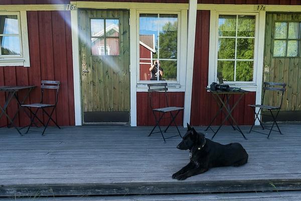 Schwarzer Hund vorm Schwedentypischen Haus, Fotograf spiegelt sich im Fenster.