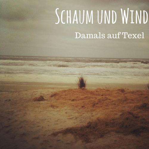 """Blogpost """"Schaum und Wind - Damals auf Texel"""" auf schwedenundso.de"""