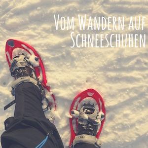 Blogpost: Schneeschuhwandern - Erfahrungen und Tipps auf schwedenundso.de