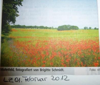 Landeszeitung, 01.02.2012, Teil 2