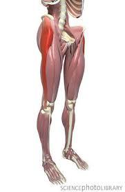 腸脛靭帯 炎症 ランナー 治療 ストレッチ