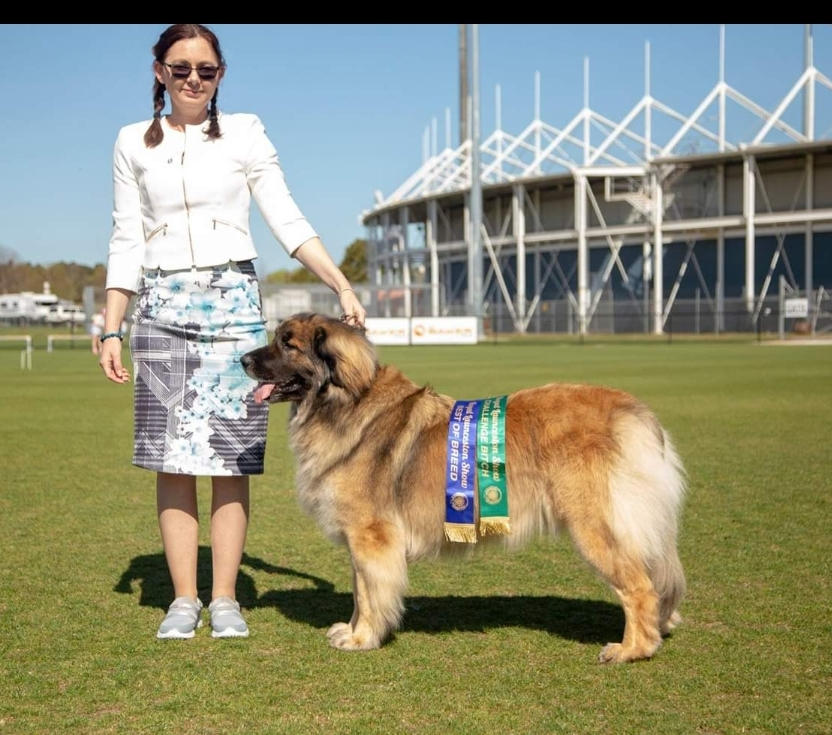 Matilda with owner Sharon