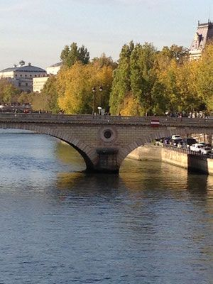 Bridge view in Central Paris