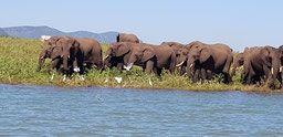key2paris recommends places run by Lynda Van Niekerk in South Africa