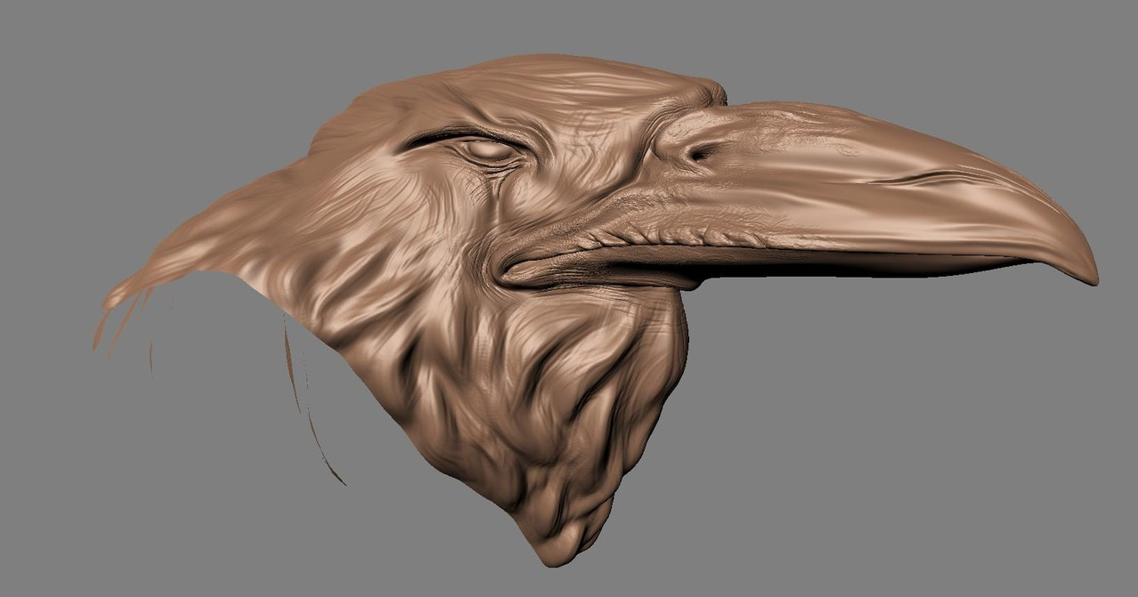 Sculpted head, image from Mudbox.
