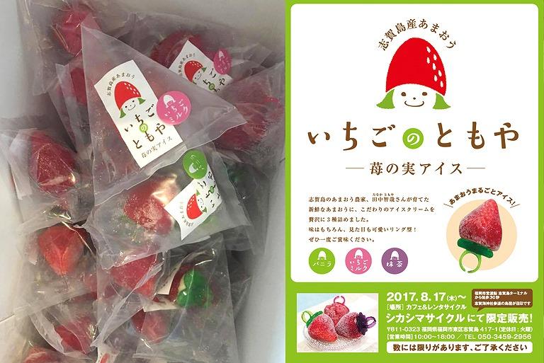 苺の実アイスパッケージ、チラシ