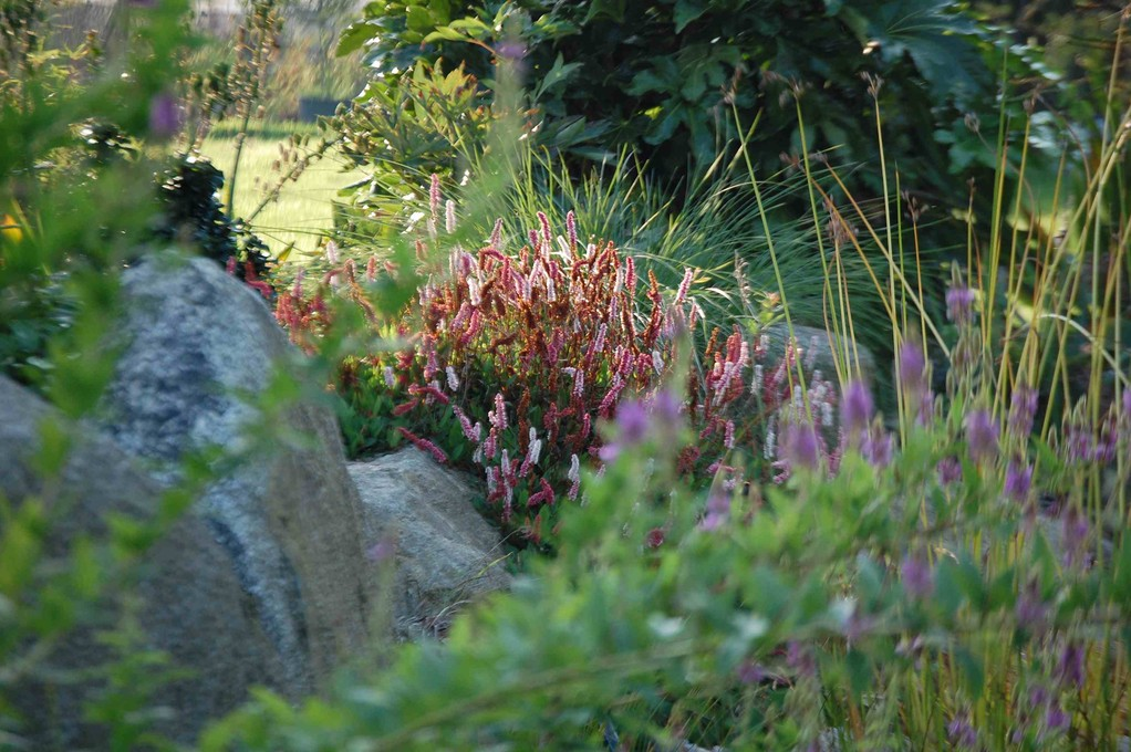 Sources et inspiration andrew 39 s paysage cr ation et for Entretien jardin manche