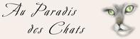 http://www.paradis-des-chats.com