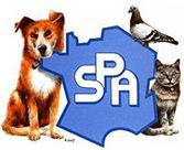http://www.la-spa.fr