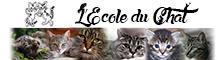 L'Ecole du Chat