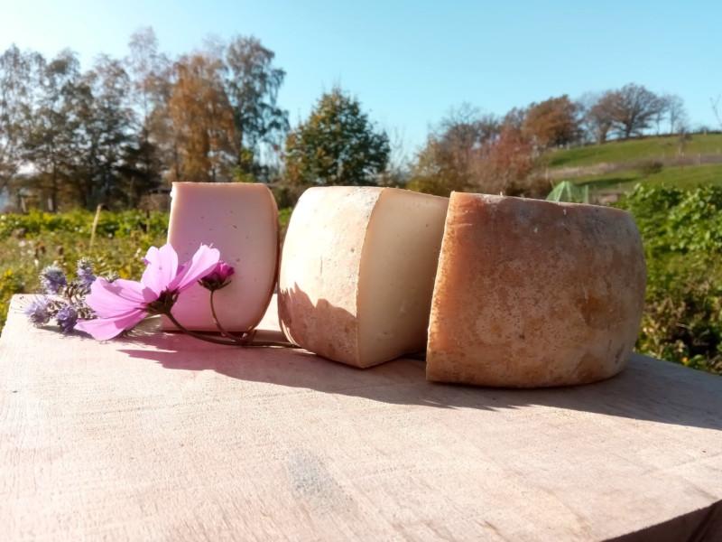 Ferme Méli Mélo - fromage à base de lait de chèvre