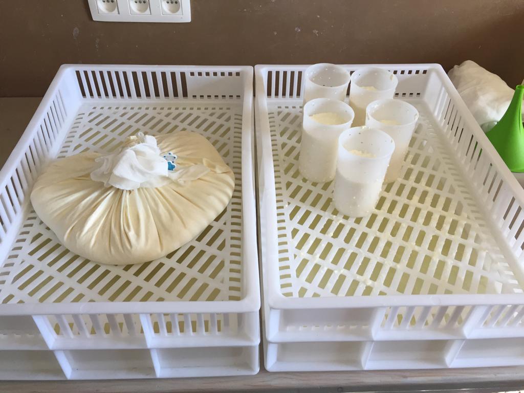 Vert Eden - Fabrication de fromages au lait cru de vache bio