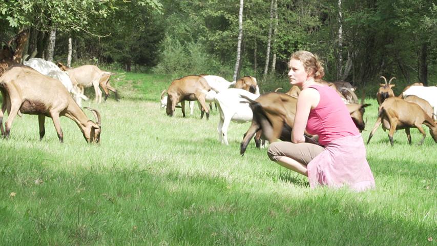 La Chèvrerie du Moulin du Wez - La Roche-en-Ardenne - Margot Moreau