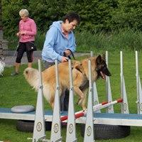Hondenschool Rotterdam Fun4paws