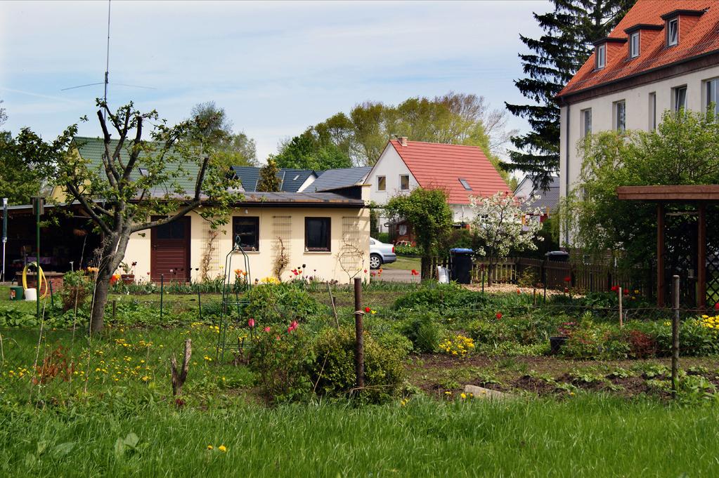 Gartenidylle hinter Clara-Zetkin-Straße 2