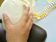 頭蓋骨の調整イメージ画像