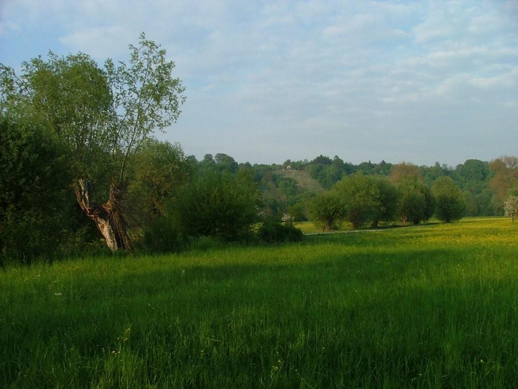 """Unten angekommen öffnet sich Ihnen der Blick auf Wiesen und den Weinberghang """"Remminger""""."""