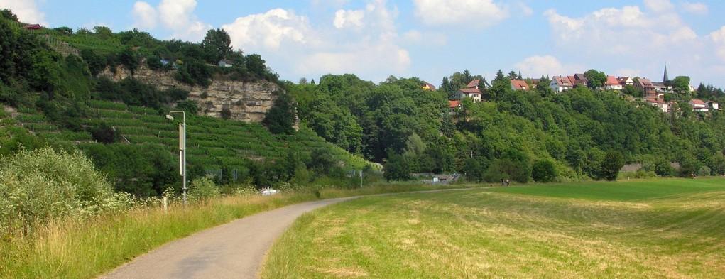 Ökologisches Großprojekt Zugwiesen Ludwigsburg 1