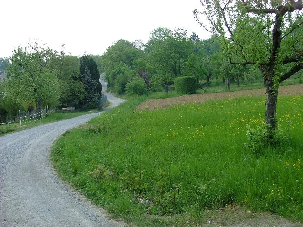 Der Höhenweg fürht oberhalb des Glemstales entlang.