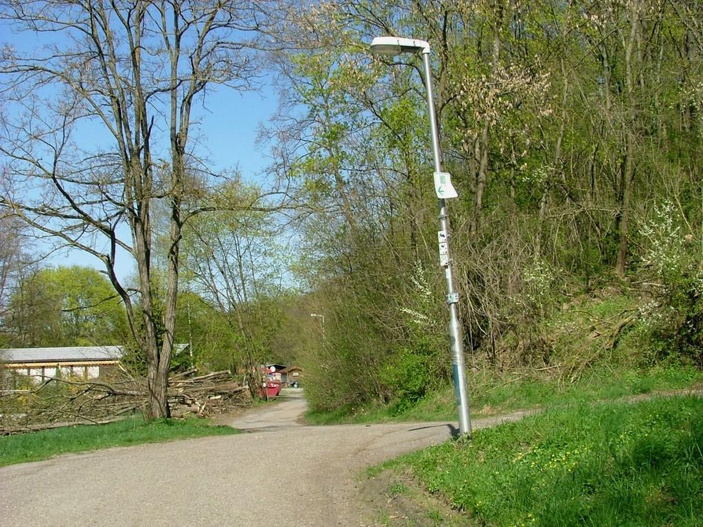 Erst ein Stück am Neckar entlang, dann geht es rechts hoch zu den Sportanlagen.