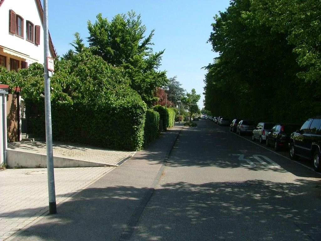 """Vom Parkplatz geht es rechts auf die Kirchenweinbergstraße, die Sie bis in das Streuobstgebiet """"Altenberg"""" führt."""