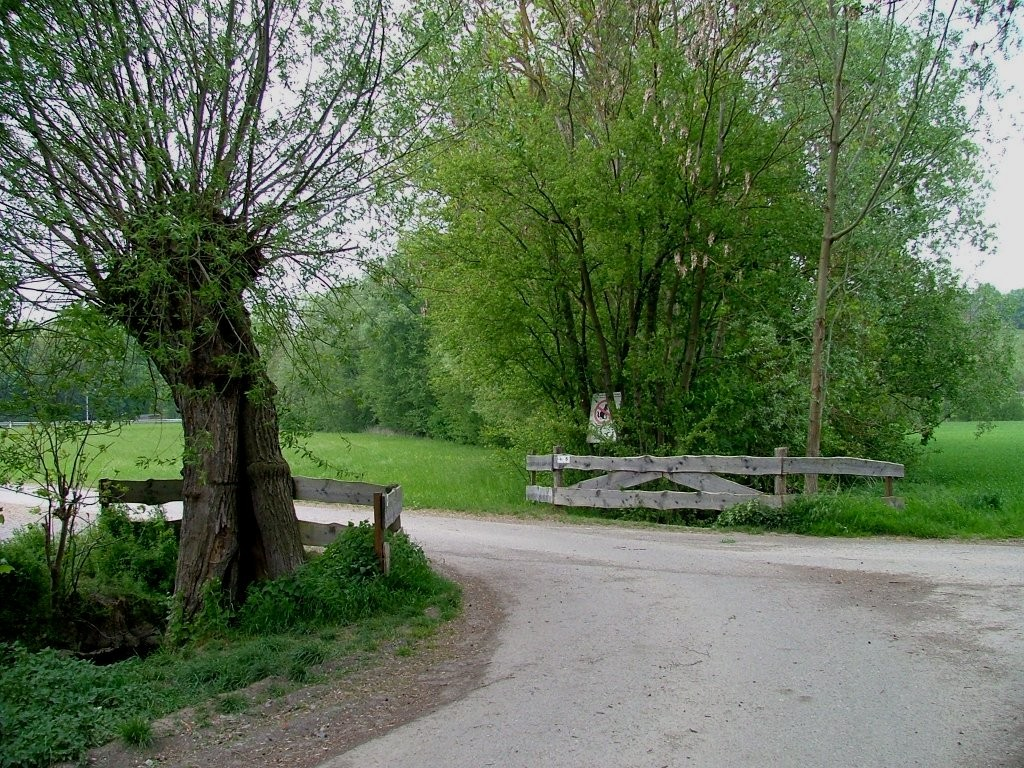 Überqueren Sie eine Leudelsbachbrücke und danach die Landstraße Asperg-Markgröningen.