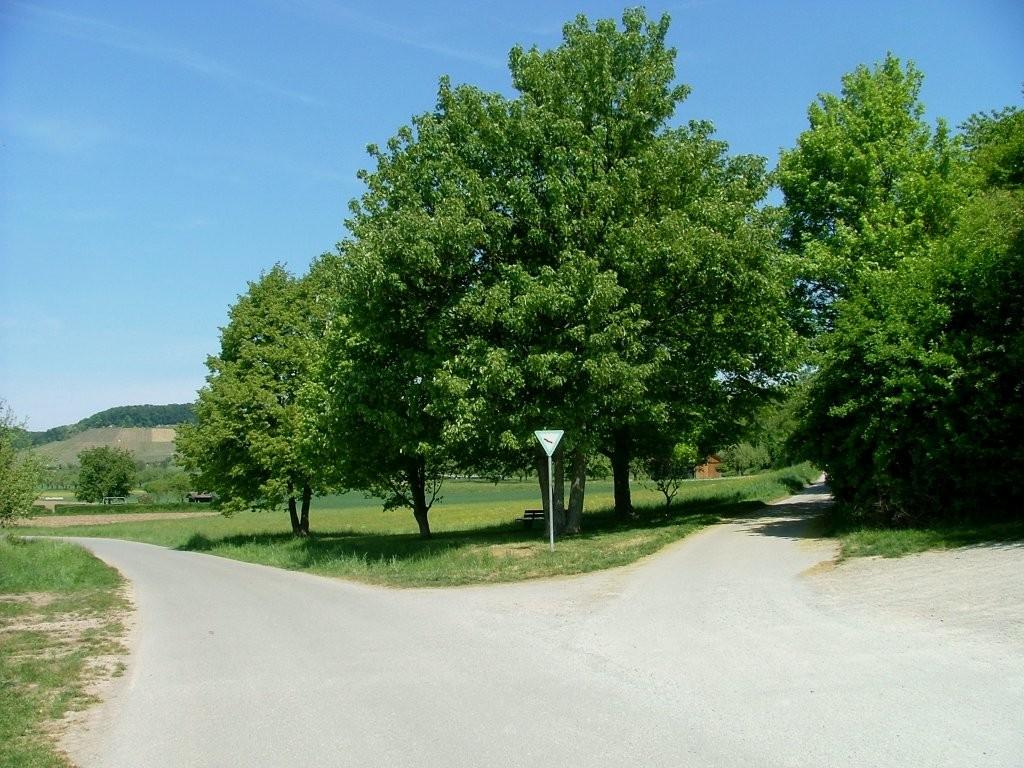 """Hier geht es rechts weiter in das Streuobstgebiet """"Breitloh""""-"""
