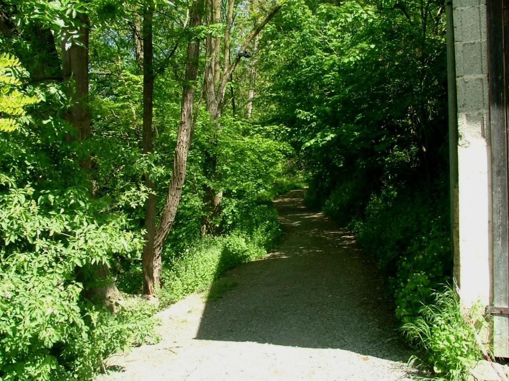 Dieser Schotterweg bringt Sie in das Streuobstgebiet unterhalb des Lichtenbergs.