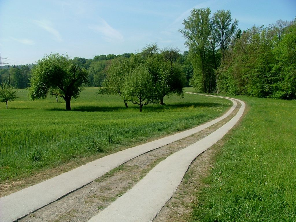 Der zweispurige Fahrweg führt durch das Wiesental Richtung Untermberg.