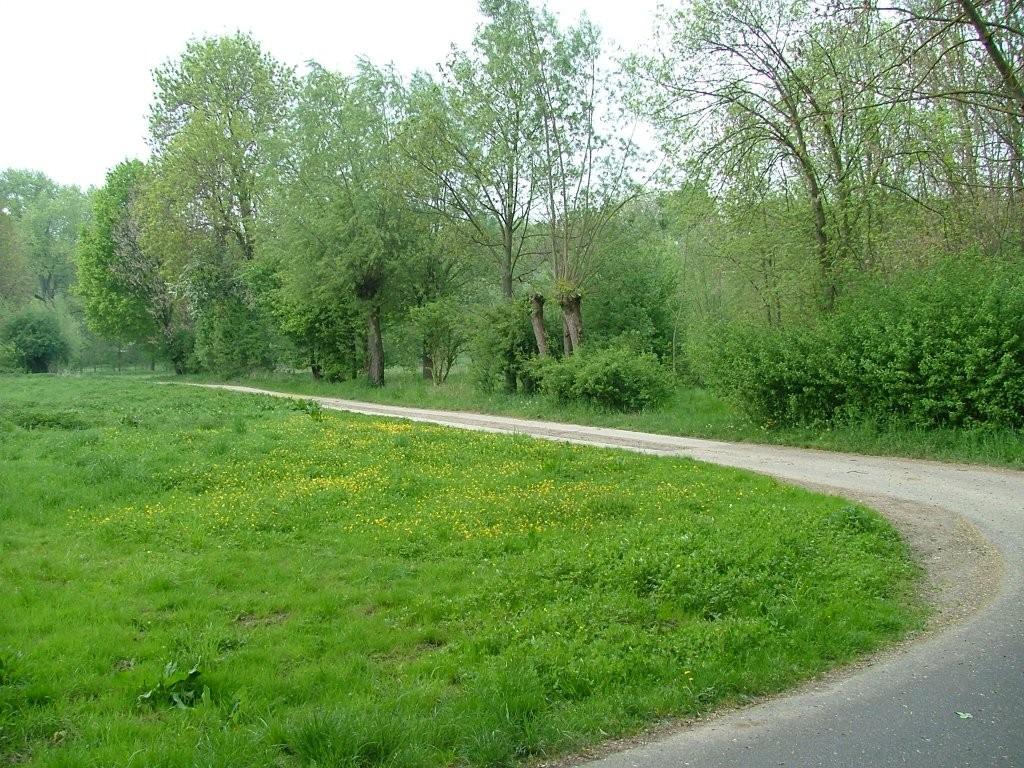Und weiter geht es am Leudelsbach entlang.