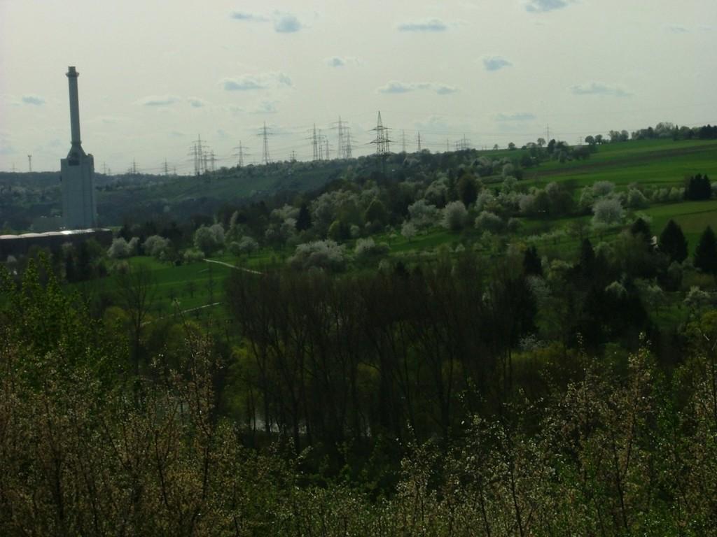 Blick aufs Neckartal.