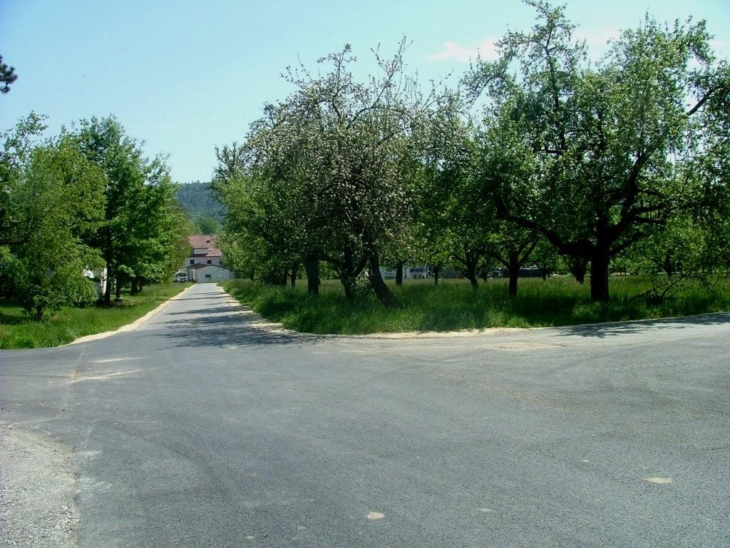 Beim Sauserhof nochmal einige Obstbäume.