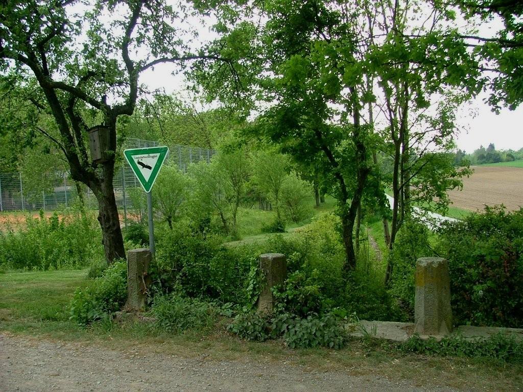 Hier fahren sie an einem Landschaftschutzgebiet mit einer kleinen Brücke vorbei.