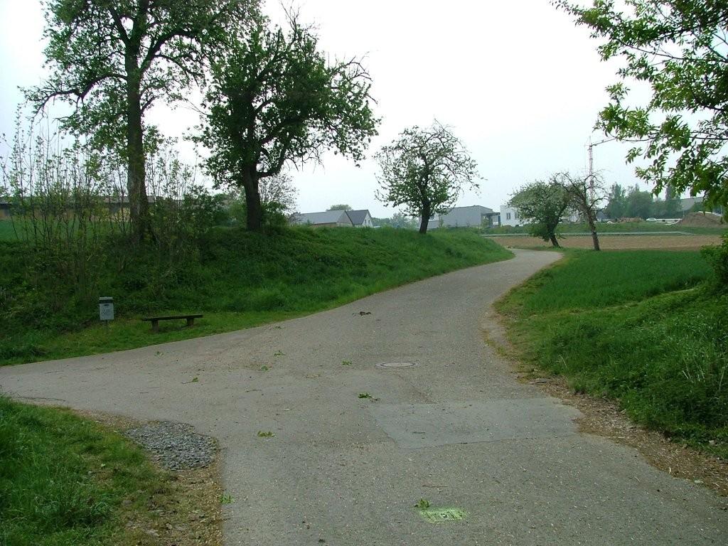 """Ca. 100 Meter vor der Landstraße Tamm-Markgröningen geht es links den """"Grasiger Weg"""" hinauf nach Markgröningen."""