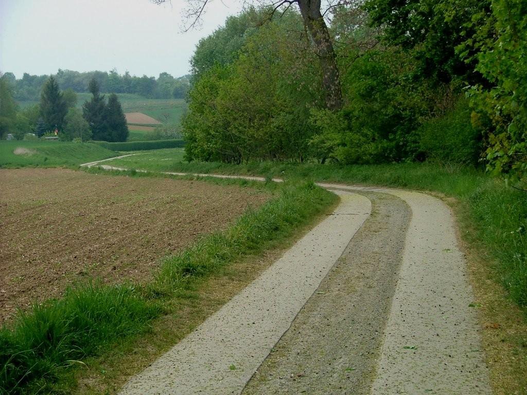 Das Schlussstück am Leudelsbach ist ein Fahrweg mit zwei Betonspuren.