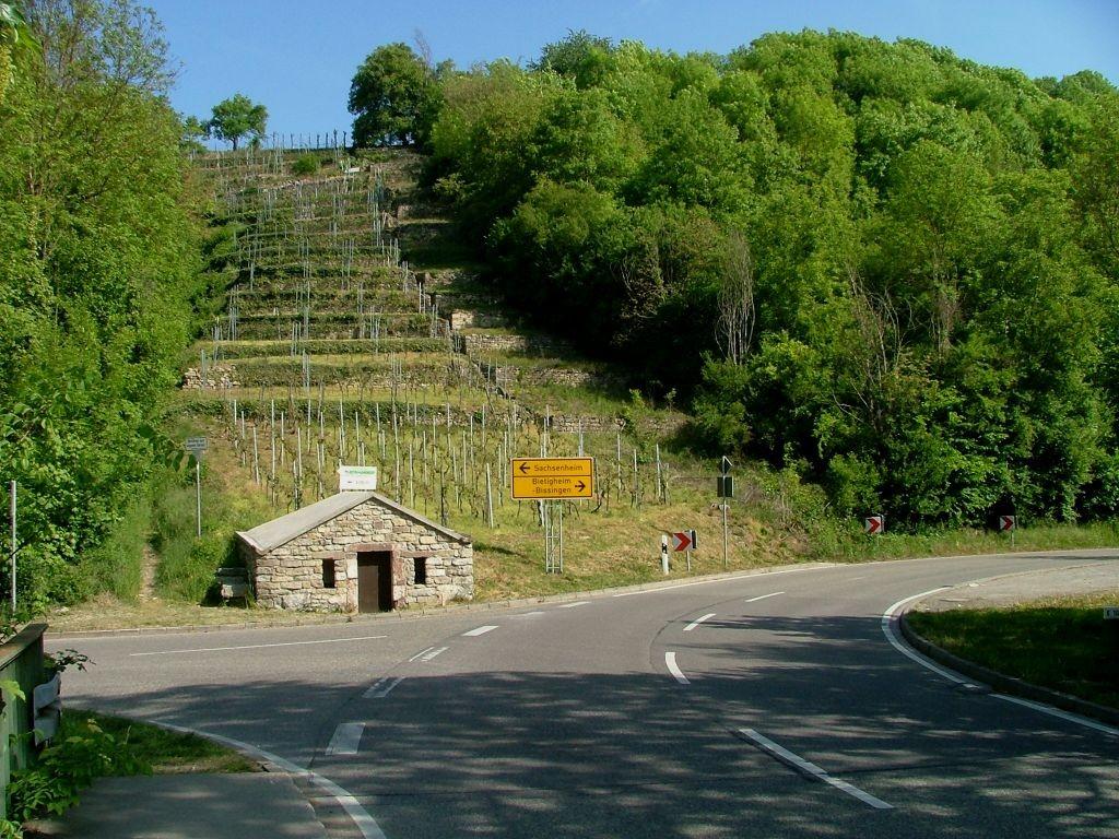 Gleich nach der Brücke geht es rechts weiter auf der Landstraße Richtung Untermberg.