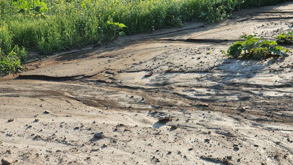 Bodenerosion durch Starkregen