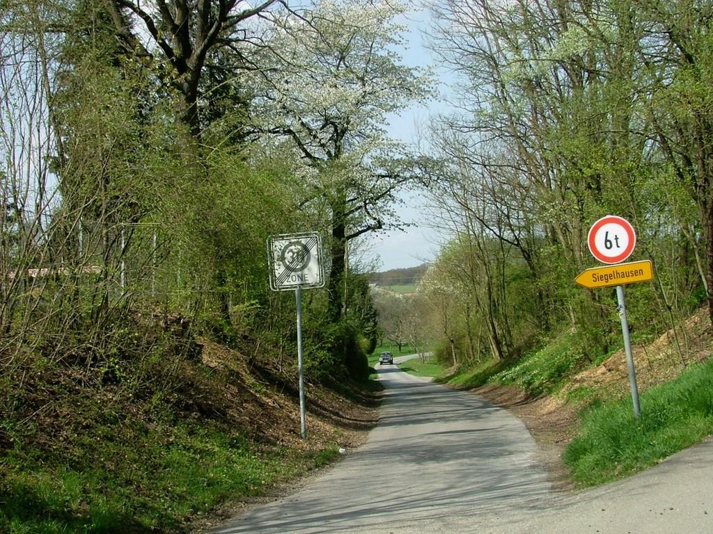 Dieser Hohlweg führt Sie nach Siegelhausen