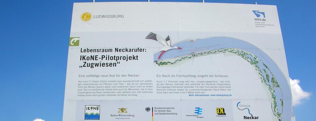Ökologisches Großprojekt Zugwiesen Ludwigsburg 4