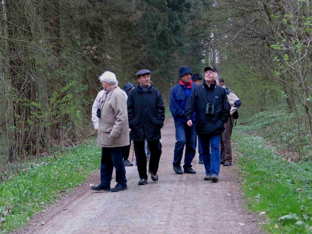 Vogelkundliche Führung 2010 - Im Oberen Wald Bietigheim
