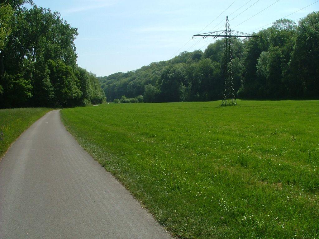 Der Letzte Abschnitt ist das Wiesental zwischen Bissingen und Bietigheim.