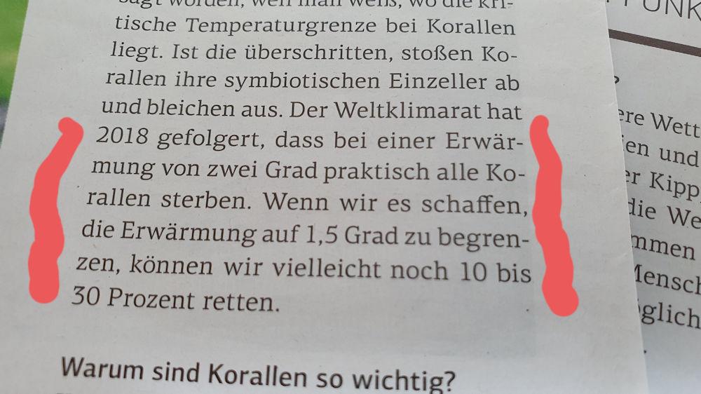 Korallen sterben ab wenn wir nicht tätig werden (Schrot&Korn 04/2021, Seite 68)