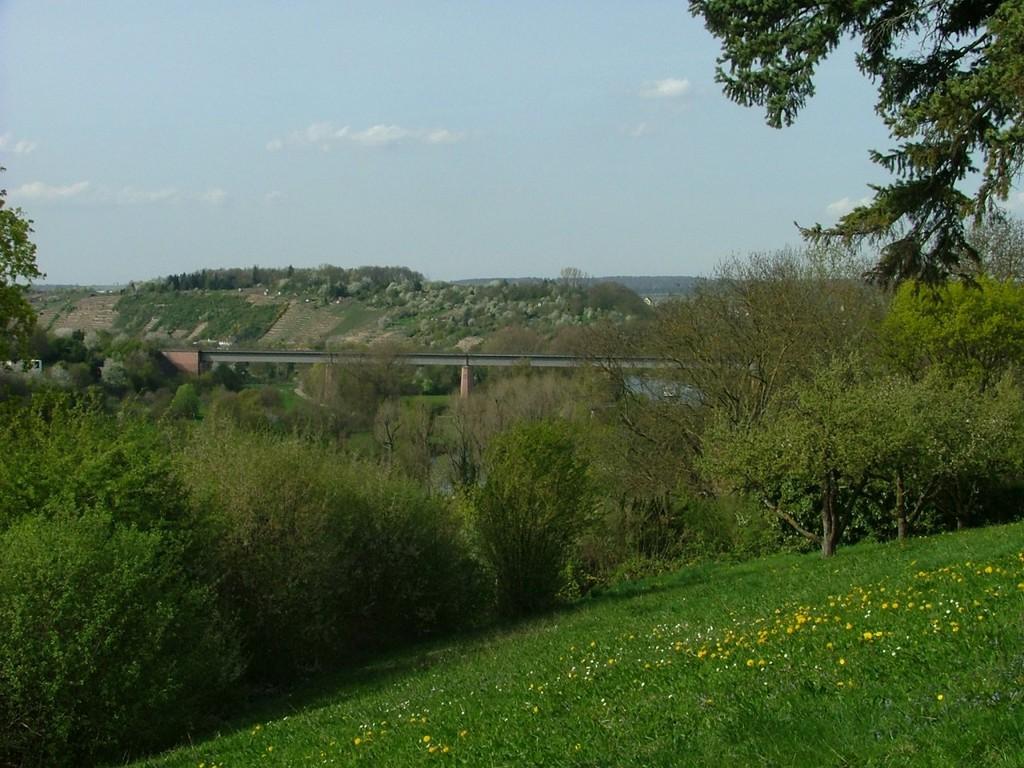 Blick von der Schillerhöhe auf die Neckarbrücke.